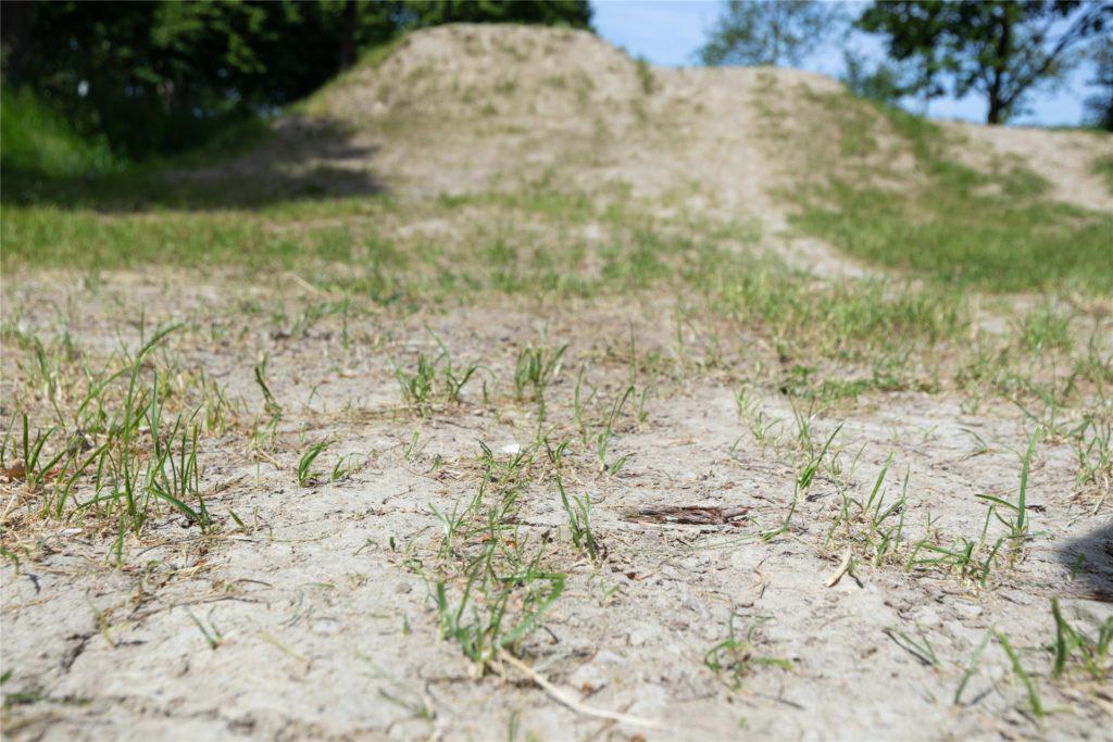Der Boden im Bikepark am Zak ist knüppelhart. Das liegt an der Bodenbeschaffenheit mit hohem Lehmanteil.