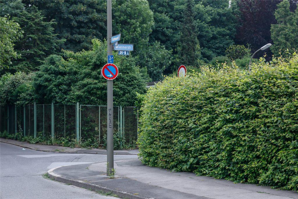Die Anwohner der Wiesnerstraße wollen sich wieder sicher fühlen und überlegen, Kameras anzuschaffen.