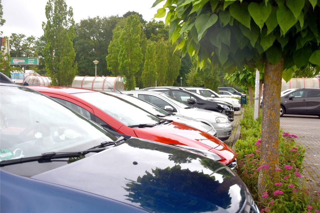 Am Mittwochmittag war auf dem Parkplatz und in den Räumen von Ter Huurne nicht viel los. Überwiegend niederländische Kunden und Fahrzeuge aus dem näheren Umfeld kamen zum Einkaufen.