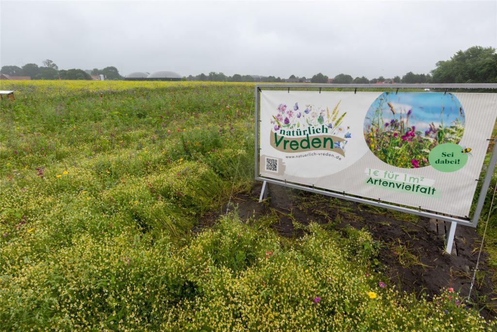 Auf dem Schild informiert Familie Herick über das Projekt