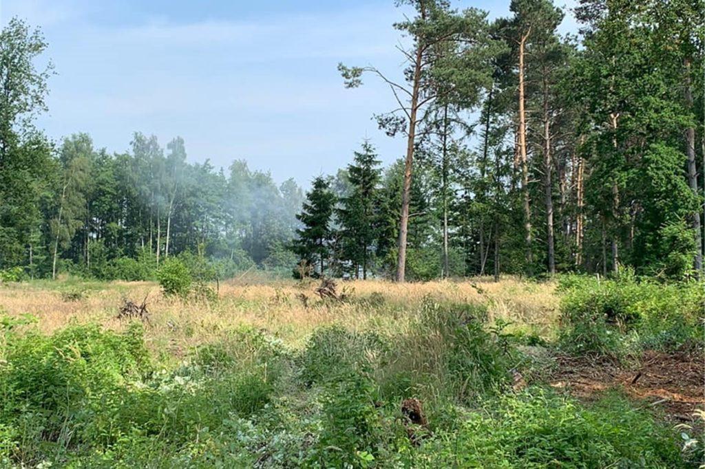 An insgesamt fünf Stellen entdeckte die Heeker Feuerwehr am 26. Juni in Ahle brennende Haufen mit Resten von Waldarbeiten.