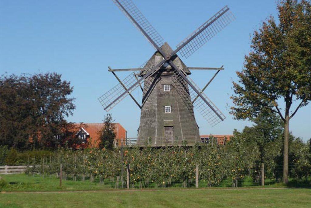 Der Mühlstein der Familie Rütter stammt aus der über 200 Jahre alten Windmühle in Lette, in der Matthias Rütters Vater bis 1956 als Müller gearbeitet hatte.