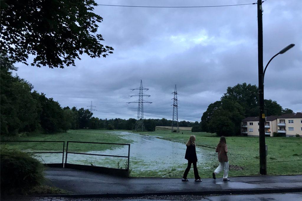 Über die Overgünne floss das Wasser weiter über Wiesen und Felder Richtung Hörder Bach.