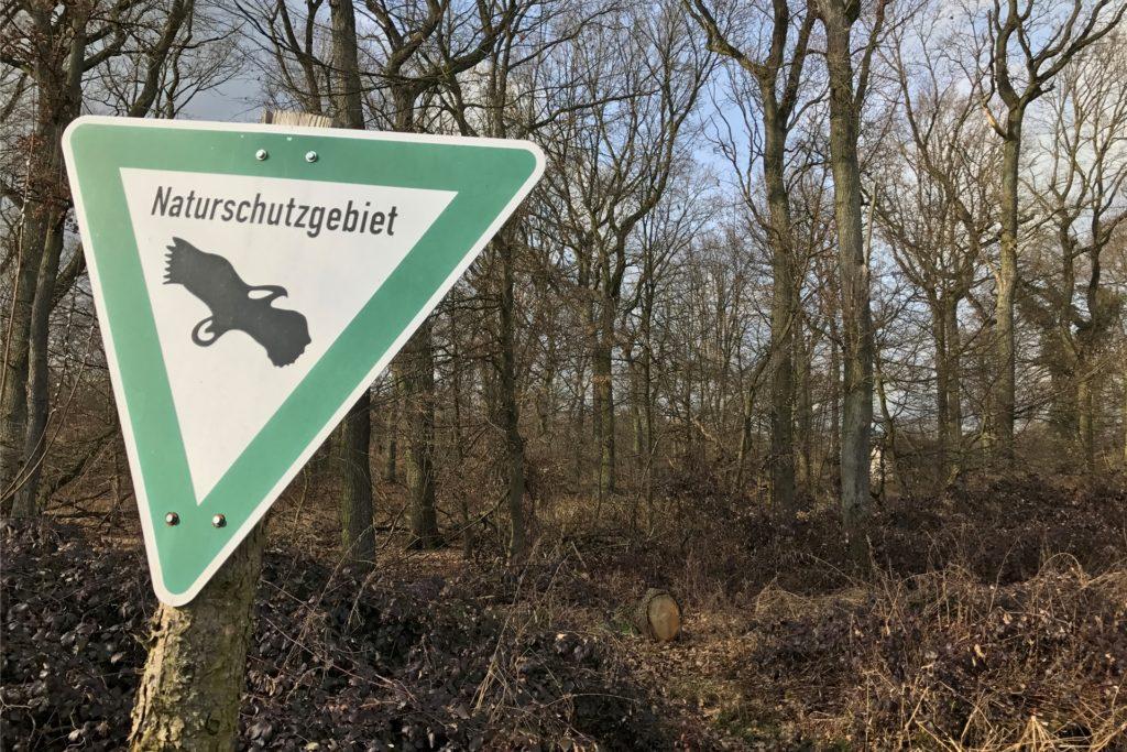 Auf der Strecke passieren die Radler mehrere Naturschutzgebiete − wie zum Beispiel den Beerenbruch zwischen Dortmund und Castrop-Rauxel.
