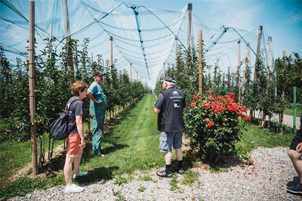 Besuch bei einem Obstbauern.