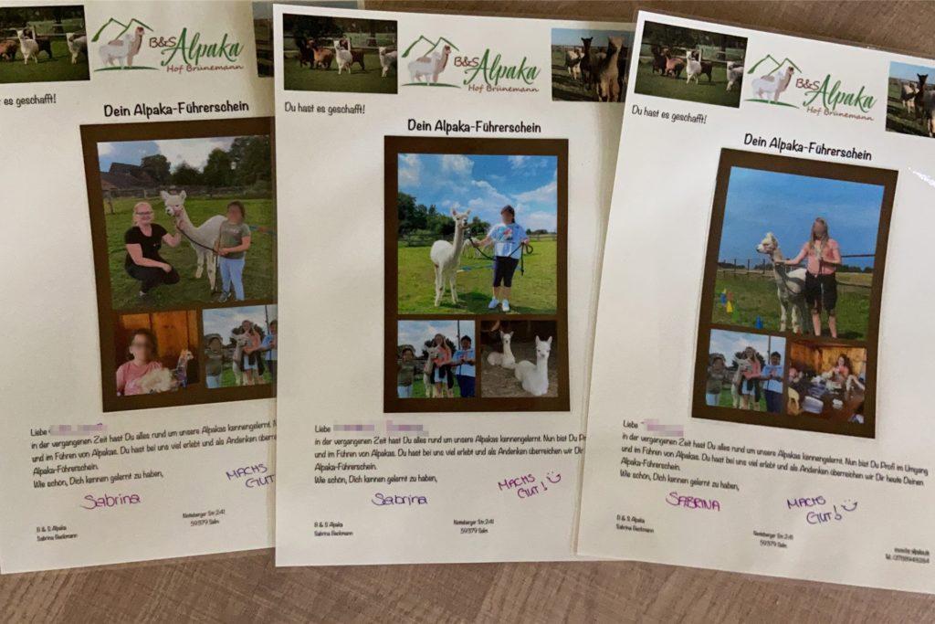Die große Urkunde bescheinigt den Kindern, in den letzten Wochen zum Alpaka-Experten ausgebildet worden zu sein.