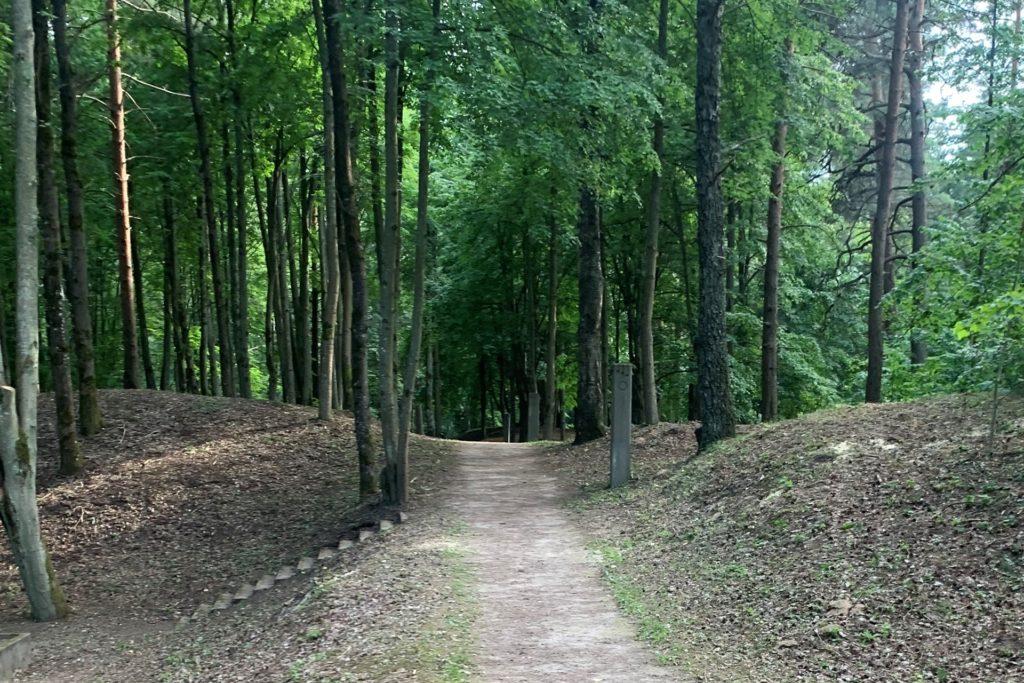 In den Wäldern werden noch weitere Massengräber vermutet. Die Georadar-GmbH aus Heek will das Gelände im September mit modernster Technik gründlich sondieren.