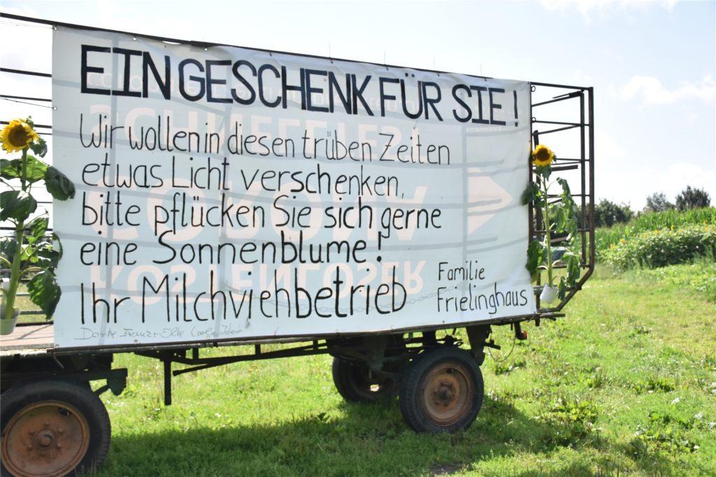 Mit diesem Plakat macht die Familie Frielinghaus seit Sonntag auf ihre Sonnenblumen aufmerksam.