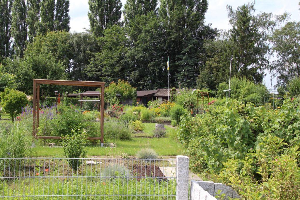 Die Kleingartenanlage am Buchenberg ist mit ihren großen und gepflegten Parzellen nicht nur einen Insekten, sondern auch eine Augenweide.