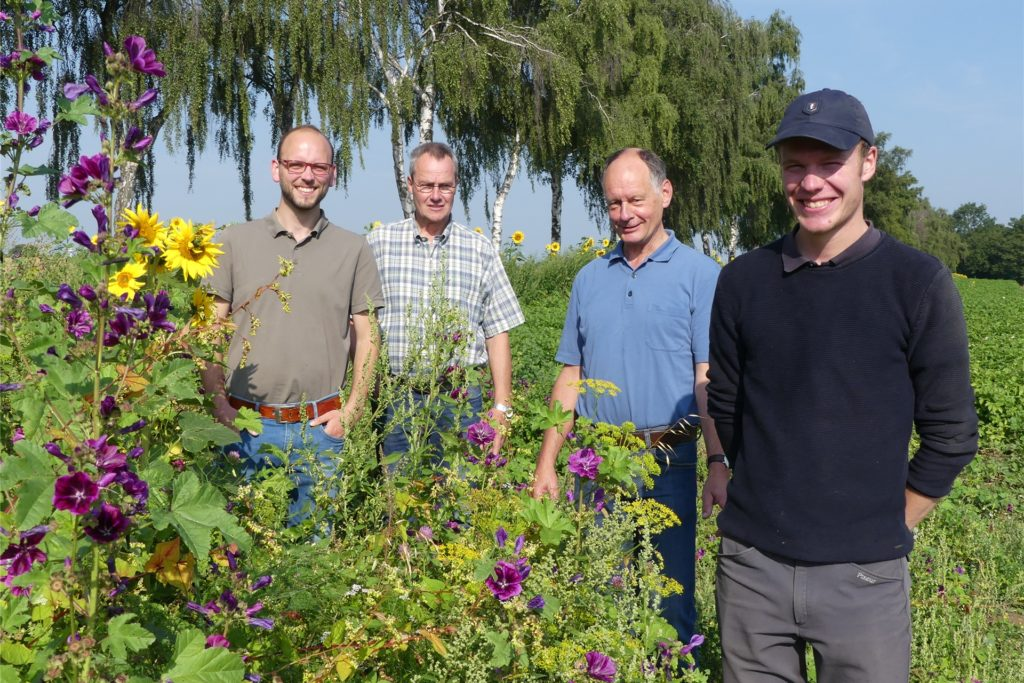 Sie sind stolz auf die bunten Blühstreifen (v.l.): Axel Lohmann, Bernd Schulte, Werner Dettmer-Prause und Samuel Mrohs.