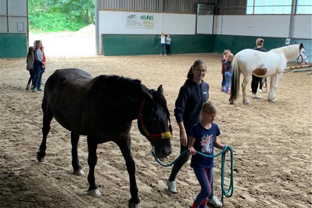Die Pferde standen bei der Ferienbetreuung natürlich im Mittelpunkt.