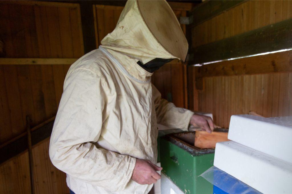 Schon seit 24 Jahren ist Werner Gahlen Imker. Die Entwicklungen im Hinblick auf das große Bienensterben bereiten ihm Sorge.