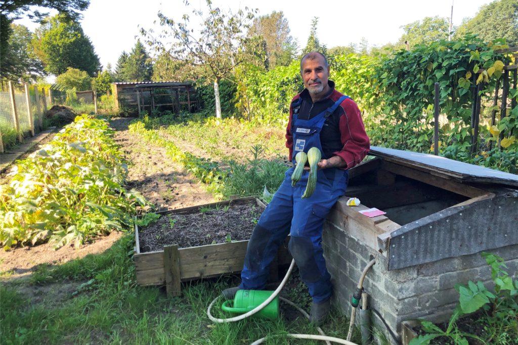 Giuseppe Cervino hat seit knapp 20 Jahren eine Parzelle an der Victorstraße gepachtet. Er baut hier viel Gemüse an.
