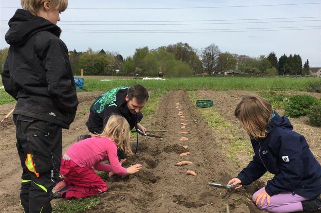 Der sogenannte Kinderacker gehört zu den beliebtesten Bereichen auf dem Gelände der Solidarischen Landwirtschaft in Bork.