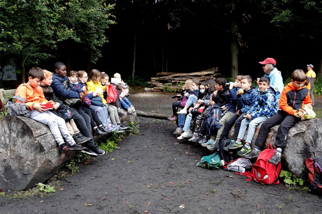 Der Wald bietet auch viele Möglichkeiten für eine Rast, stellten die Kinder fest.