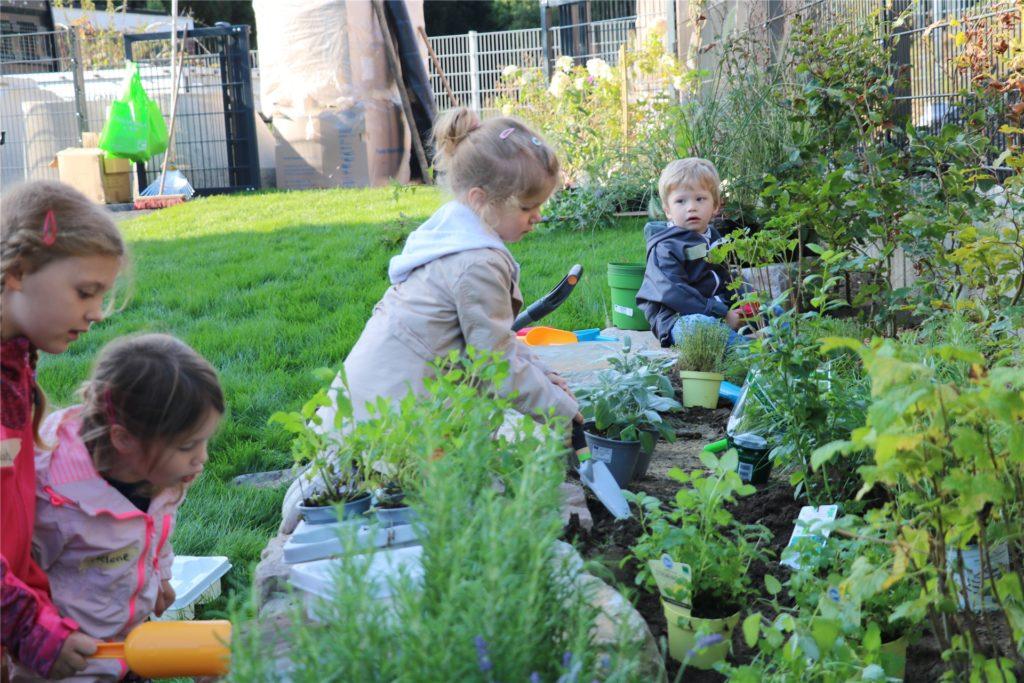Fühlen, Probieren, Schnuppern - für den essbaren Kräutergarten wurden nur Kräuter verwendet, die sich für den Verzehr eignen. Das Einpflanzen machte besonders viel Spaß.