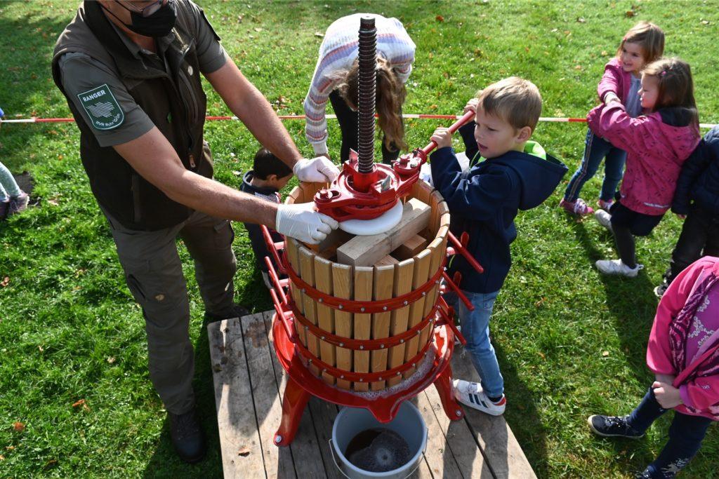 Die Kinder konnten aus den Äpfel selbst Apfelsaft pressen.