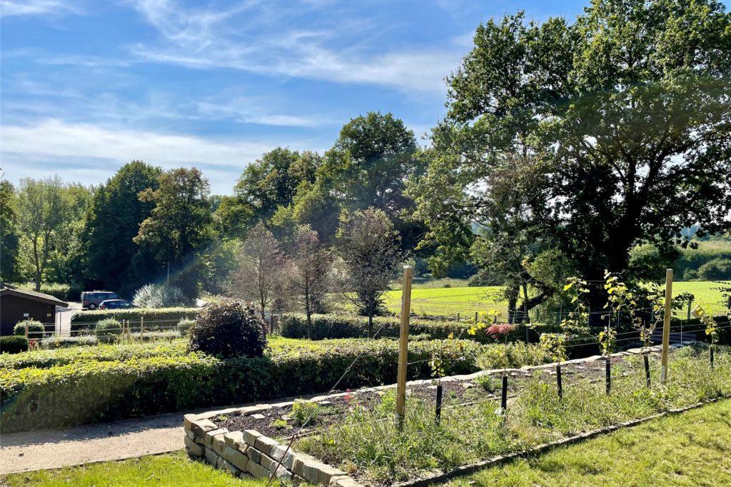 Der Weinberg wurde um neue Grabfelder mit 73 Grabstätten erweitert.